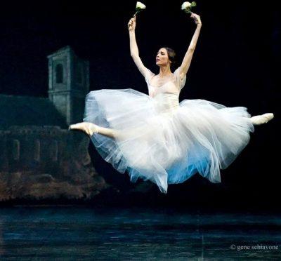 Communicatiemiddelen De Bosduif Ballet